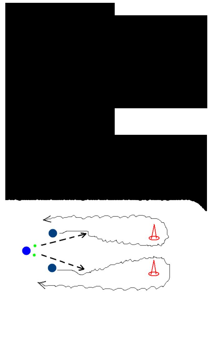 14-2-Sesión-velocidad-de-reacción-voluntaria_CBA-xxx-2